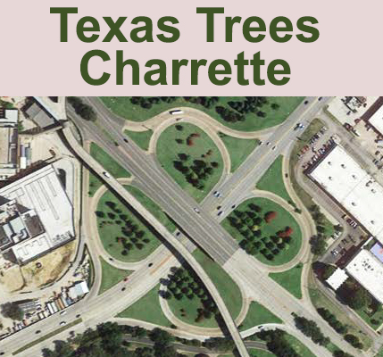 Texas Trees Foundation Charrette