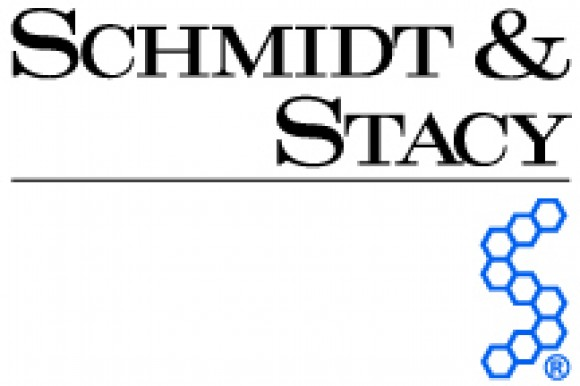 SCHMIDT & STACY® Consulting Engineers, Inc. Logo