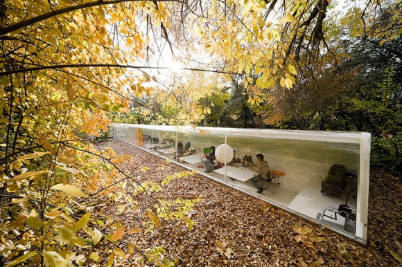The Selgas y Cano office settled neatly in the trees. (Source: Iwan Baan Photography)