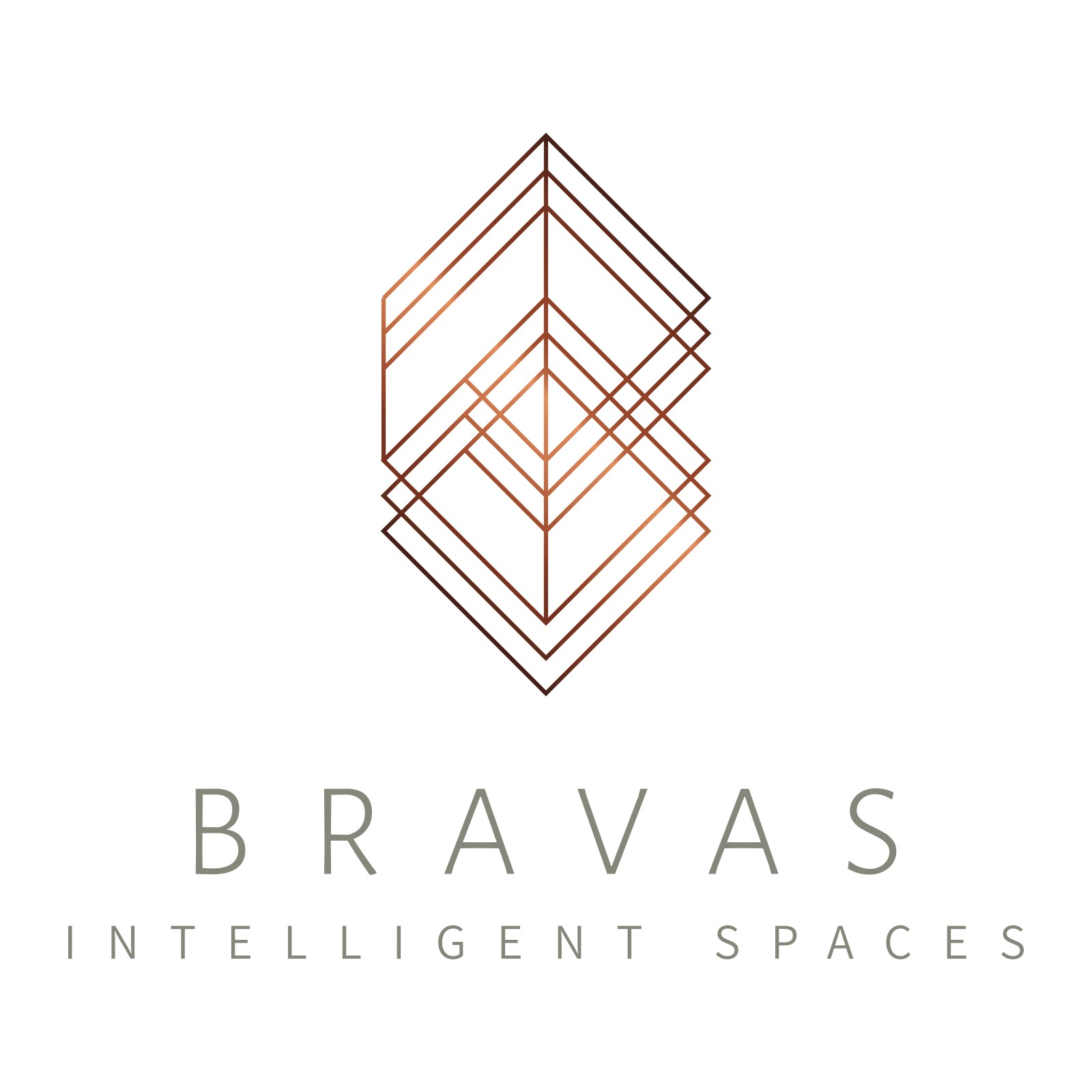 Credit Carnival - Bravas logo