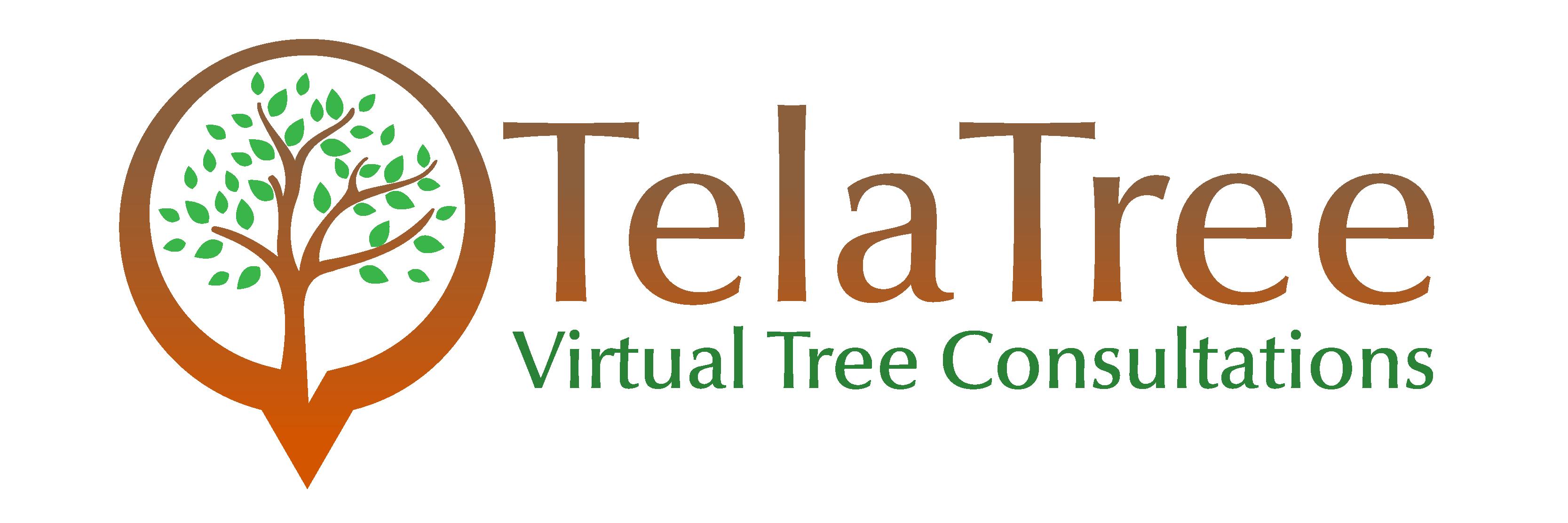 Bark + Build: Tela Tree logo